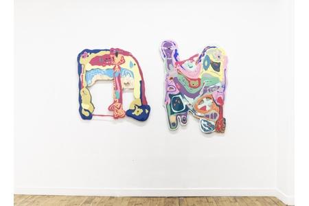 Nicolas Momein, Finger Trap, galerie Ceysson & Bénétière Saint-Etienne
