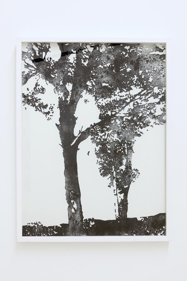 """Salle 2 - vue d'exposition Nicolas Daubanes, """"S'ils avaient pu, ils auraient emporté la lumière et l'eau"""" La Halle Centre d'art contemporain, Pont-en-Royans Photo Phoebé Meyer"""
