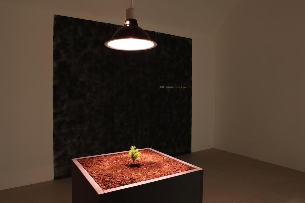 """Salle 3 - vue d'exposition Nicolas Daubanes, """"S'ils avaient pu, ils auraient emporté la lumière et l'eau"""" La Halle Centre d'art contemporain, Pont-en-Royans Photo Phoebé Meyer"""