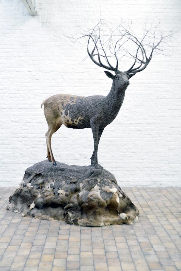 Exposition Histoires animales de Julien Salaud  jusqu'au 08 décembre 2019 à DELTA STUDIO Roubaix
