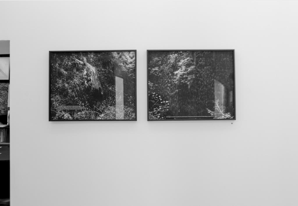 Exposition A deux pas des chiens (vallons de ville), Favret & Manez avec Sophie Braganti, du 05 juillet au 28 septembre 2019, galerie Sintitulo, Mougins