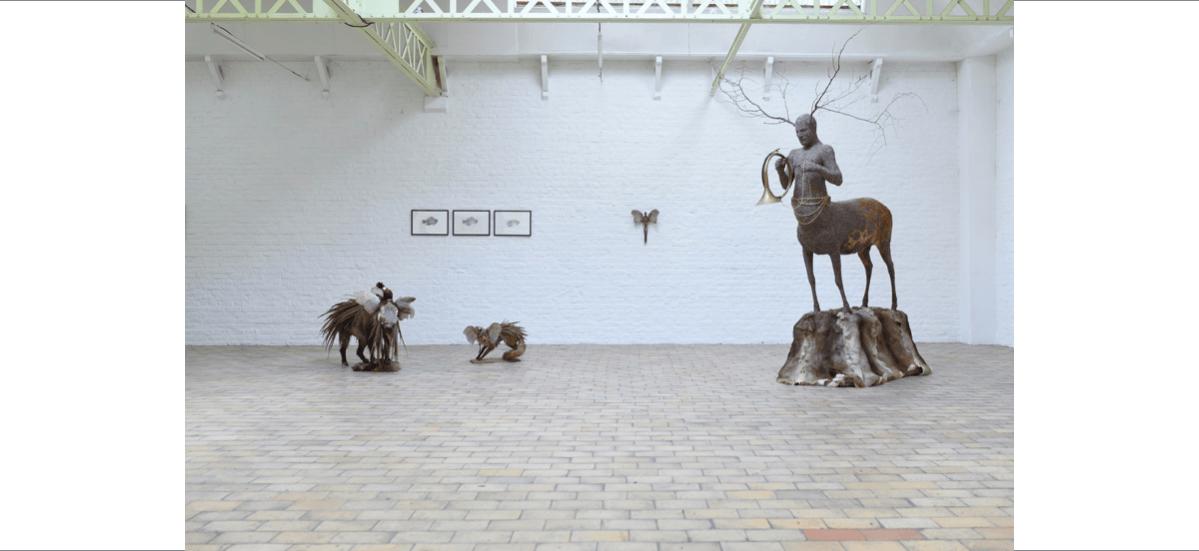 Julien Salaud, Histoires animales