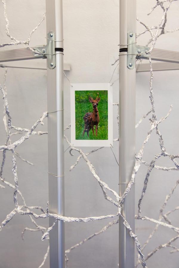 Exposition personnelle ALTERED BEAST de Pierre Clement, du 06 septembre au 19 octobre 2019 COHERENT BRUSSELS Photo Alice Pallot