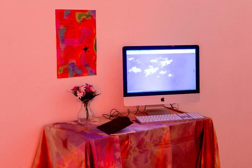 Barthélémy Cardonne Exposition lfjdeulfihxzukftikggrrehmd des diplômés DNSEP 2019, isdaT Photo Franck Alix