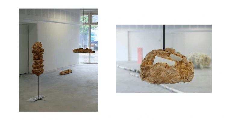 Avez-vous déjà vu ? Capsule Galerie Rennes