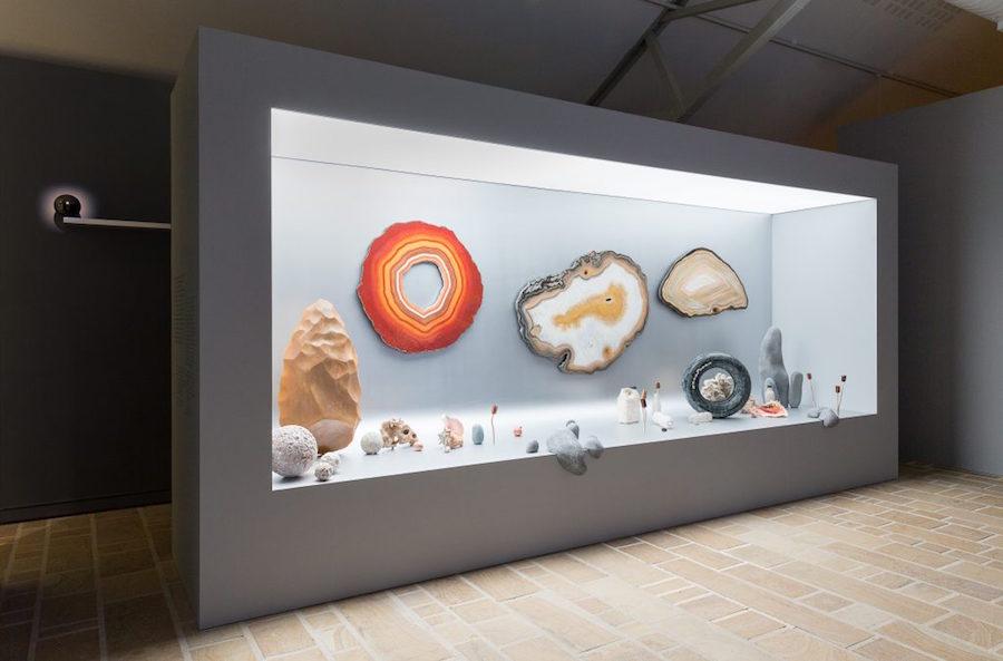 """Vue de l'exposition """"Cabinets de curiosités"""", Photo N. Savale © FHEL, 2019"""