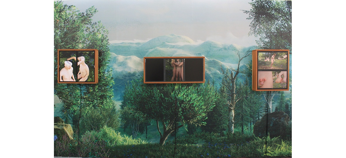 Lucas Seguy, Esthétique de la chair virtuelle