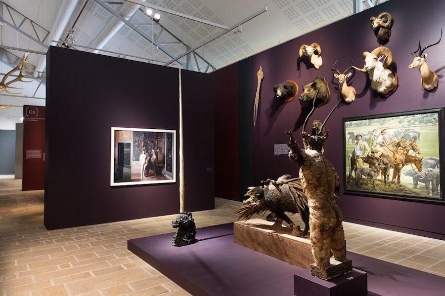 """Collection du Musée de la Chasse et de la Nature (Paris), Vue de l'exposition """"Cabinets de curiosités"""", Photo N. Savale © FHEL, 2019"""