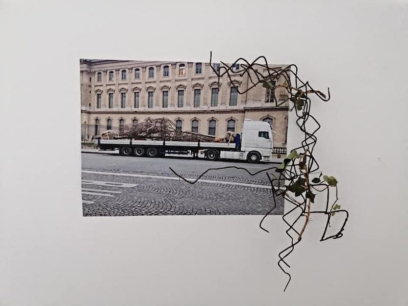 Morgane Porcheron, Nouveaux paysages - 2019 Photographies, matériaux divers 49 x 38 cm  Photo Florence Traullé