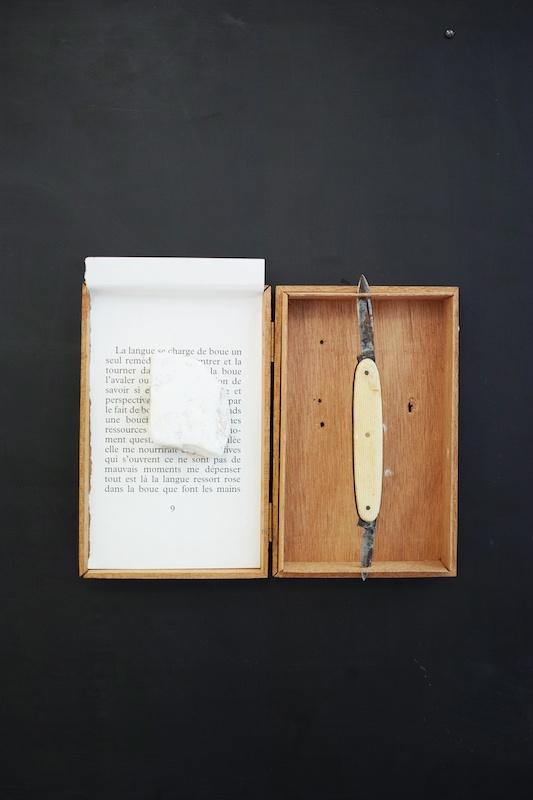 Ícaro Lira, Sans titre | 2019 boîte en bois, canif, pierre, page de livre, plaque pvc 86 x 61 x 3 cm. Courtesy et photo Salle Principale