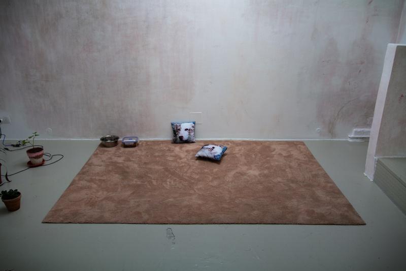 Vue de l'exposition collective 9 HACKS : Outils potentiels sur une proposition de Lola Fontanié et Jade Lièvre, In Extenso, Clermont-Ferrand