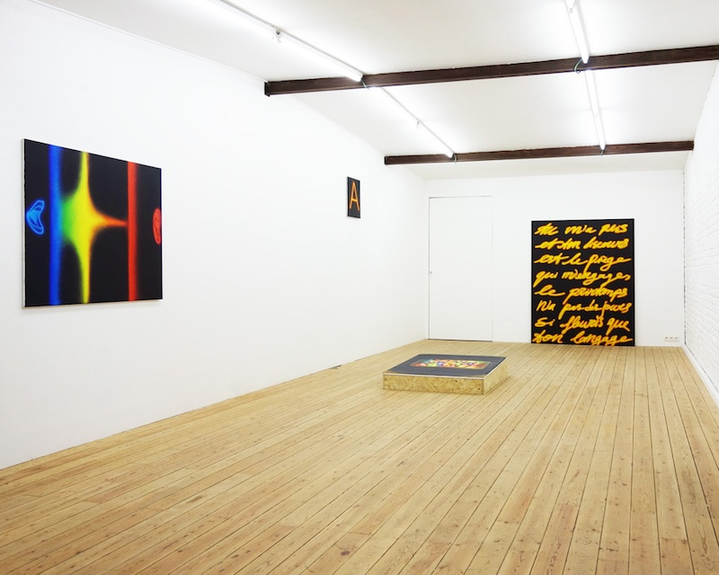 Pedro Ruxa, Vue d'exposition With Silence We Speak, V2Vingt Curated by Emmanuel Lambion Brussels, Février 2019