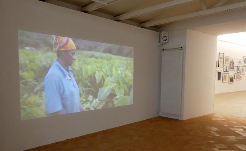 125 Hectares, Florence Lazar, Vue de l'exposition Pendant que les champs brûlent, Maison des Arts Georges et Claude Pompidou, 2020. Photo © MAGCP