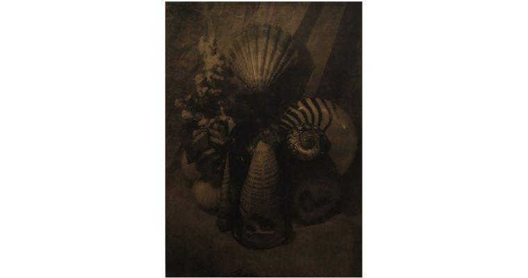EDOUARD WOLTON – ULTIMA THULÉ – 12/03 AU 25/04 – GALERIE LES FILLES DU CALVAIRE, PARIS