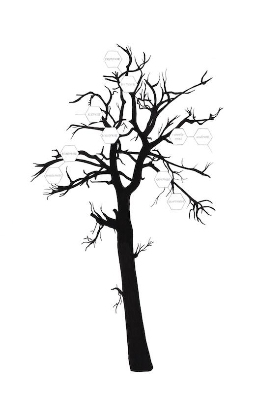 Arbre généalogique (fam. R), Jeanne Susplugas, 2016, 39,5x42cm, encre sur papier