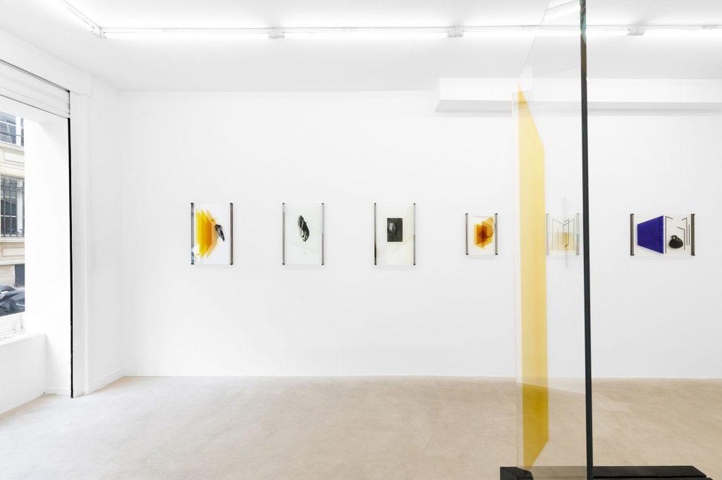 Vue de l'exposition de Pia Rondé & Fabien Saleil « Cryptide », Galerie Valeria Cetraro, 2020Courtesy des artistes et Galerie Valeria Cetraro Photo Salim Santa Lucia