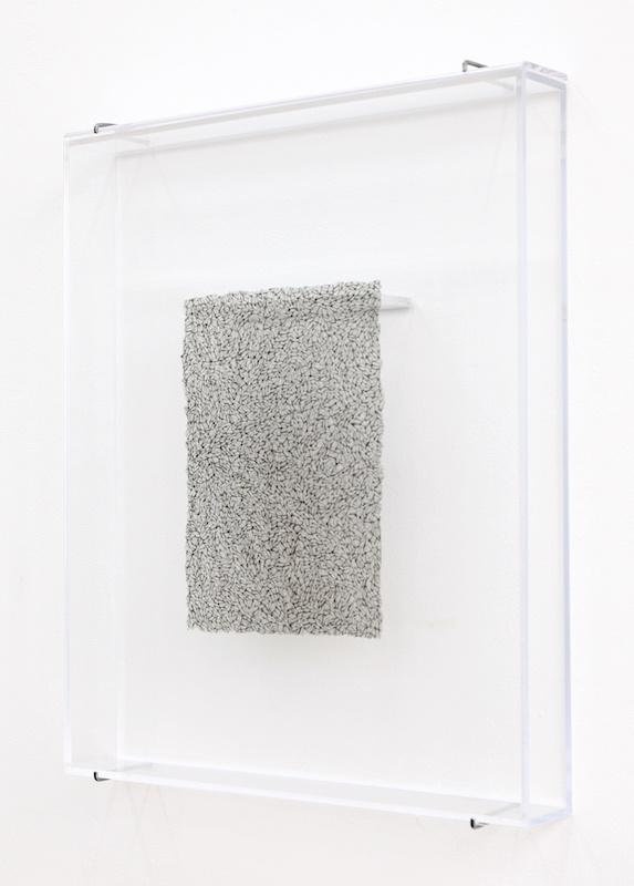 Léa Barbazanges - Page d'ailes - 2005 - Ailes de mouches Calliphora assemblées entre elles bord à bord en un format A4 21 × 29,7 cm – Ensemble de sept pages d'ailes réalisées à raison d'une par an.