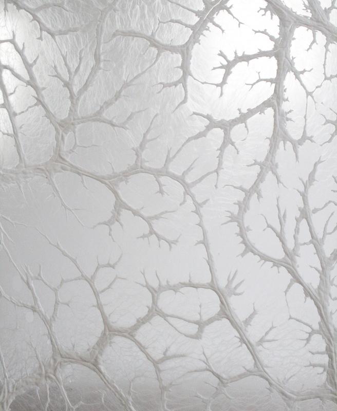 Léa Barbazanges -  Paroi de crépine – 2007 - Assemblage de crépines de porcs - 280 × 280 cm – Vue d'exposition à la galerie Xippas, 2014