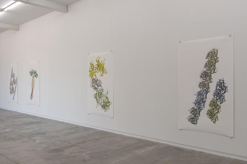 Vue de l'exposition personnelle de Ran Zhang « Resolution of Traits » à l'Ahah #griset du 25 janvier au 28 mars 2020 ©Ran Zhang