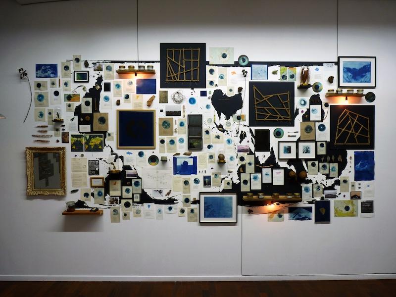 Aurélien Mauplot, Composition naturaliste Carnet des pensées lestes #1 500 x 220 cm Env. 300 éléments. 2019 (Les arts au mur, artorhèque, Pessac)