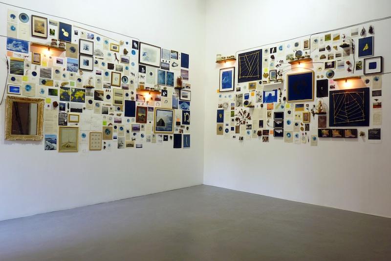 Aurélien Mauplot, Composition naturaliste Carnet des pensées lestes #3 2x L450 x H220 cm Env. 450 éléments 2019 (La ligne Bleue, Carsac-Aillac, 24)