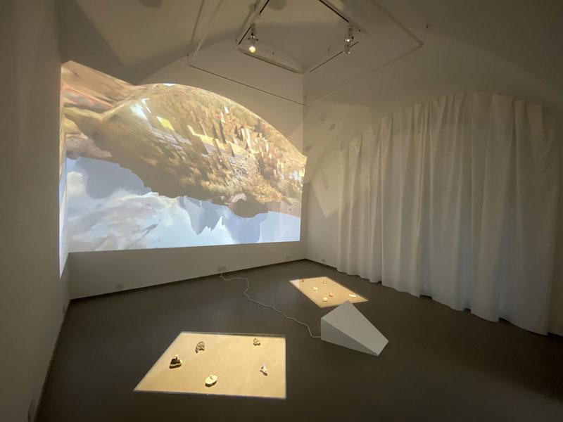 Alix Desaubliaux, Géographies, installation, vue de l'exposition Selphish