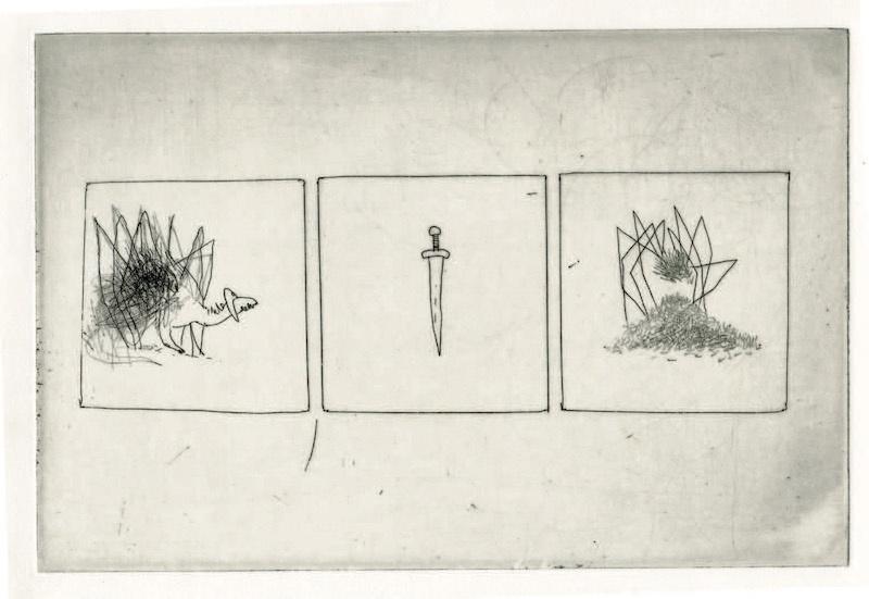 Frédéric Coché, Brünnhilde, planche n° 21, 1/5, 27 x 38 cm