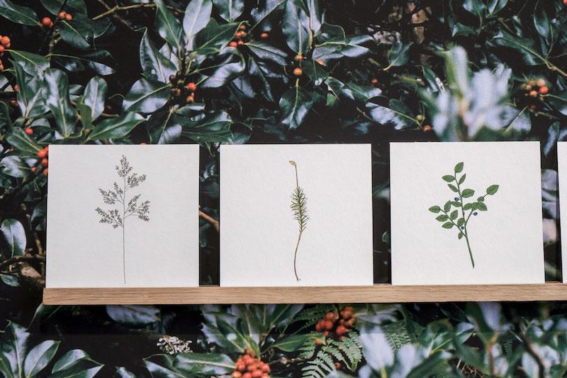 Lise Gaudaire, indice II - 2018 - Serie de dessin au feutre sur papier fine art