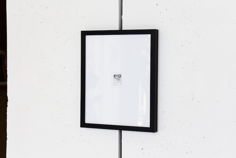 Vue de l'exposition de Jérôme Boutterin, Boutures, sans égards.  Commissariat : Antoine Duchenet - Paris, septembre 2020