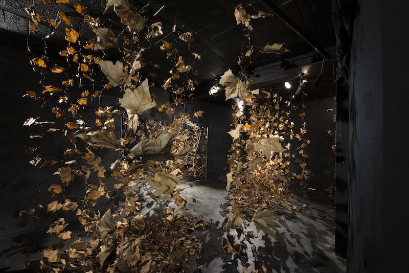 Vue de l'exposition MAGIE VERTE  jusqu'au 31 octobre à l'Espace 29 Bordeaux  © Wang Yiyang