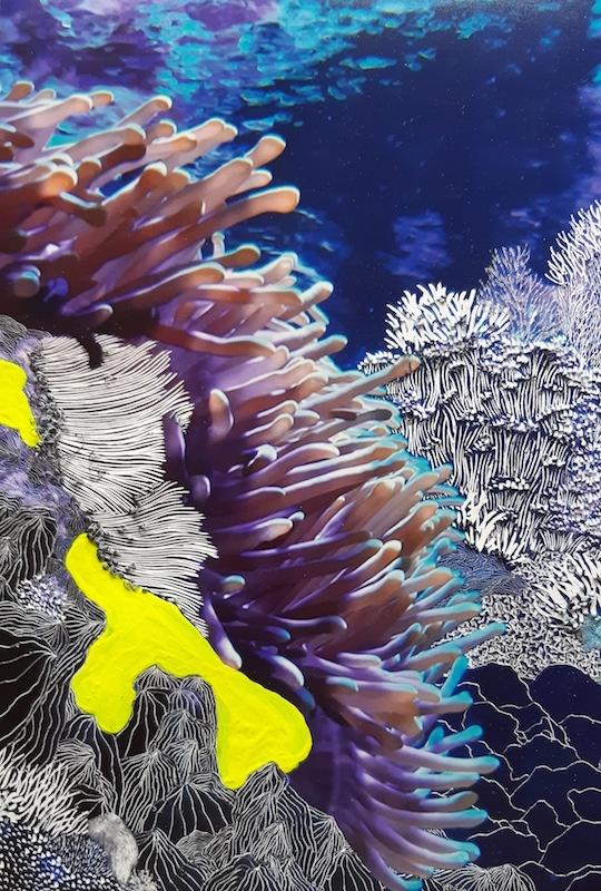 Raphaëlle Peria, Heliofungia, 2020 Courtesy artiste et galerie Papillon Paris