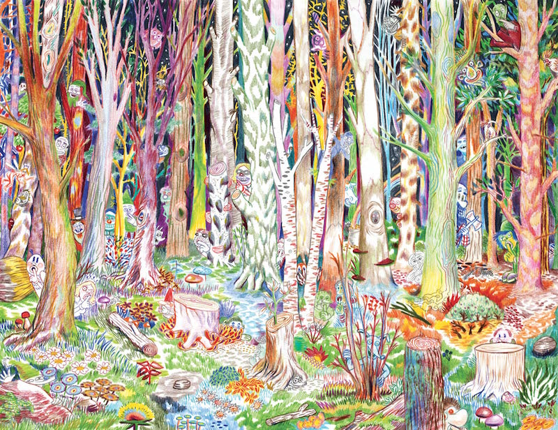 Collectif Ensaders, Chuut! crayon de couleur sur papier, 50 x 65 cm, 2013