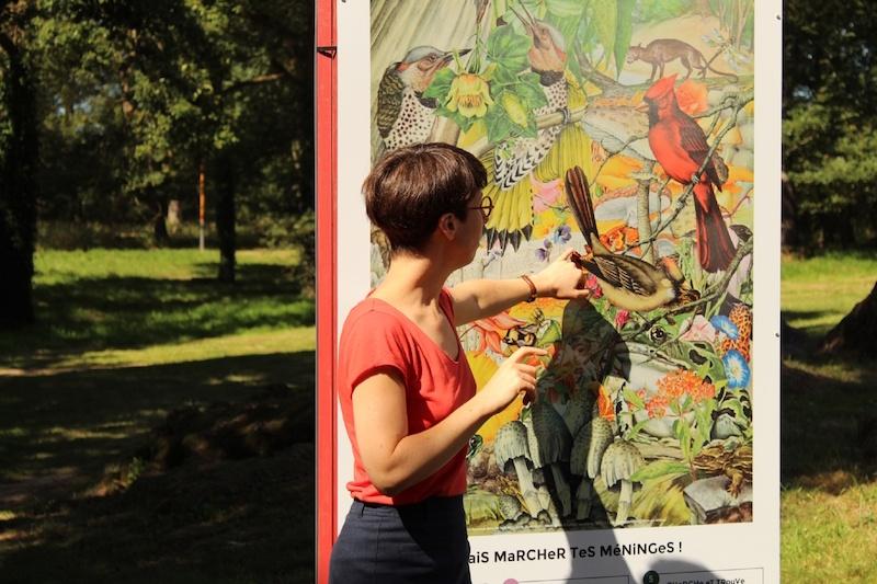 Vue de l'exposition « Il est, au pays d'Hémonie, une région boisée… » de Quentin Montagne