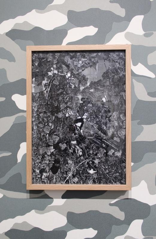 Vue de l'exposition « Il est, au pays d'Hémonie, une région boisée… » de Quentin Montagne, L'aparté lieu d'art contemporain