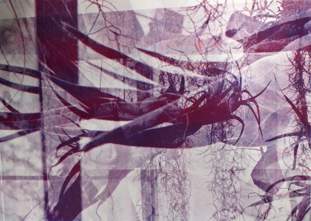Taylor Smith, Interlaced - Risographie 1, 2019, Superposition de trois photographies macroscopiques prises des orchidées aux serres de Versailles-Chèvreloup, France), 29,7 x 42 cm