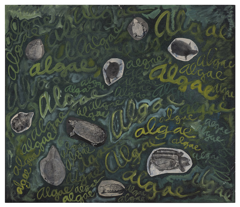Robert Smithson Algae, algae, ca. 1961-1963 Paint and photo collage on Masonite 23 3/8 x 27 1/4 x 1/4 in. (59.3 x 69.1 x 0.6 cm) (23928/M) ©Holt/Smithson Foundation, Licensed by VAGA at ARS, New York Courtesy the artist and Marian Goodman Gallery New York, Paris and London