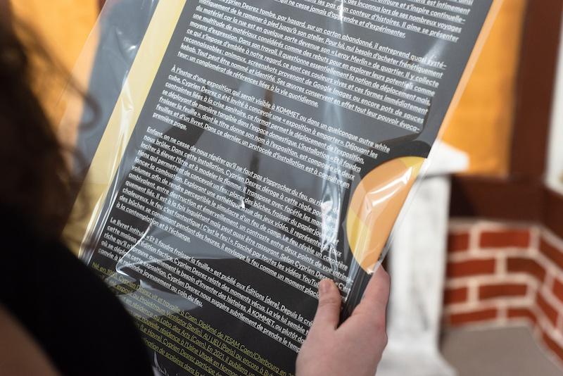 Vue d'exposition Et il faudra froisser la feuille de Cyprien Desrez  - KOMMET Lyon - Photo Lucas Zambon