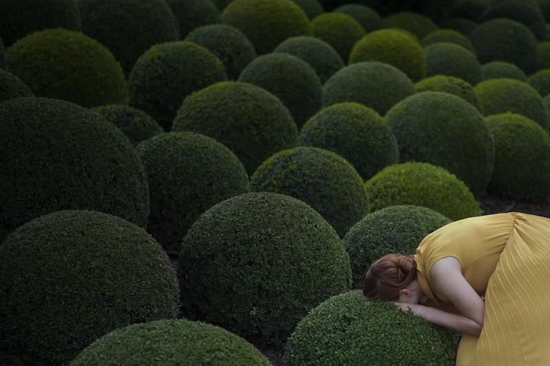 Maia Flore, VU, Jardin jaune, 80x120cm, édition de 5