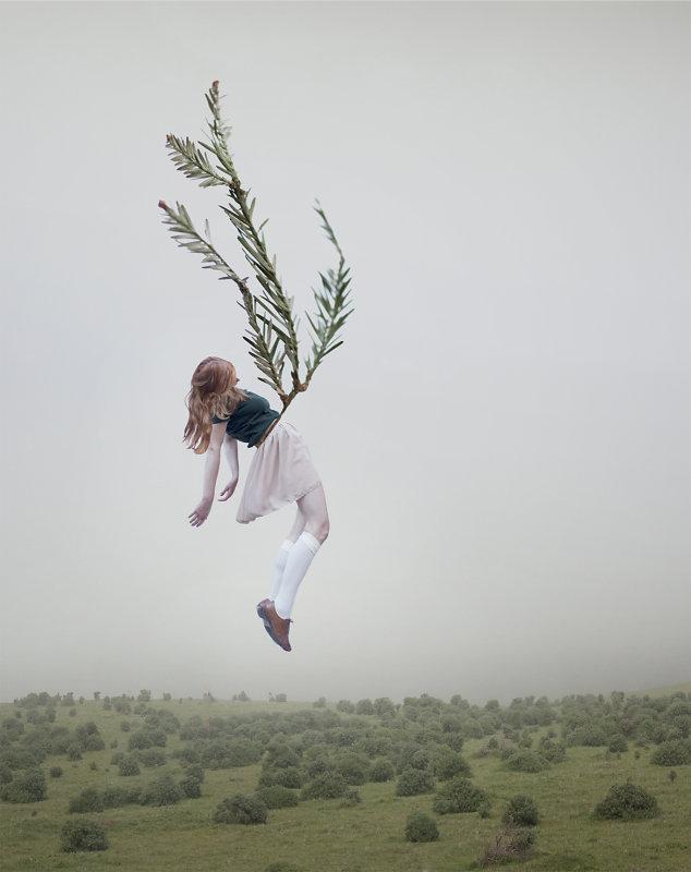 Maia Flore, VU, Sleep elevations XIII, 100x80cm, édition de 7