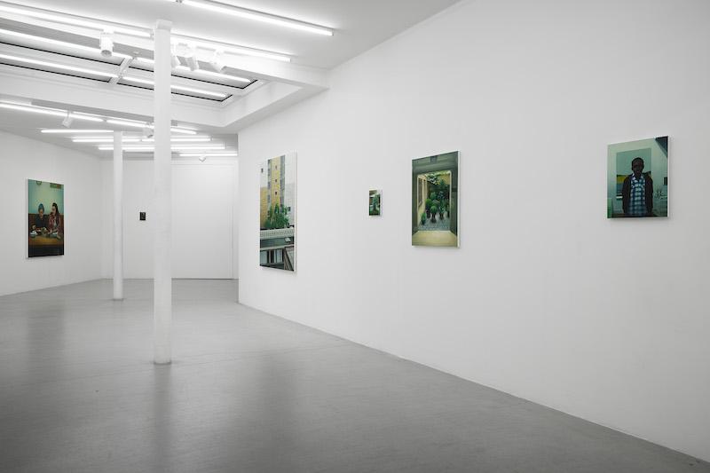 Exposition Bien que cela soit naturel, Dorian Cohen Jusqu'au 6 mars 2021 Galerie Paris-Beijing, Paris