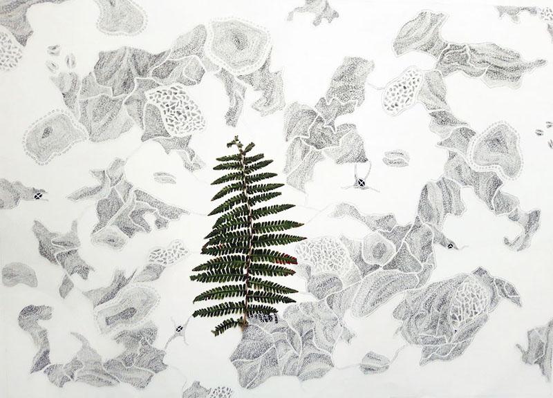 Nathalie Borowski, Sans titre – Dessin #1/5 sur papier BFK rives / plante - 56x76cm