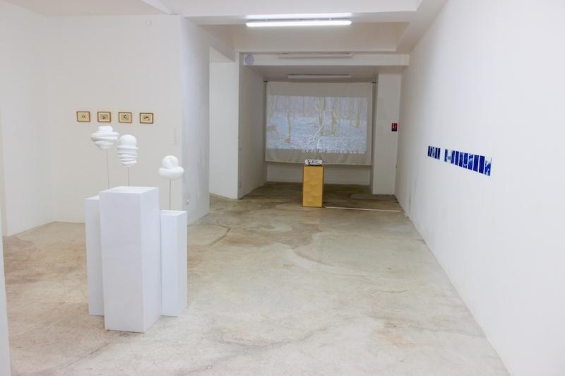 Vue exposition L'Hectare et la grenouille, espace Voltaire, lieu d'exposition géré par Plateau urbain Photo Olga Nikolaeva