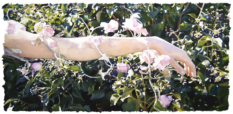 Katia Bourdarel Fleuriade#1-2013-encre et aquarelle sur papier-50x30cm