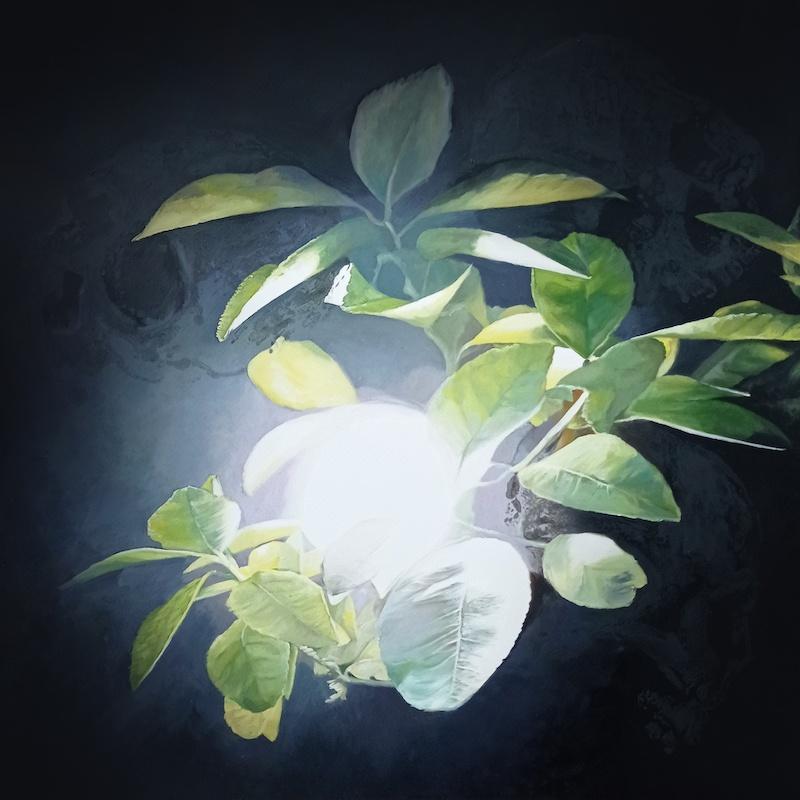 Katia Bourdarel Memento Mori #2 2021, huile sur papier, 40x40 cm