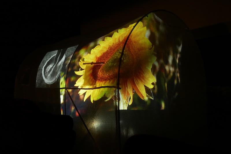 Vue de l'exposition « au milieu des choses au centre de rien #6 », 17 avril 2021, Cinéma L'Épée de Bois. © Elisa Florimond, Arthur Guespin & emploi fictif