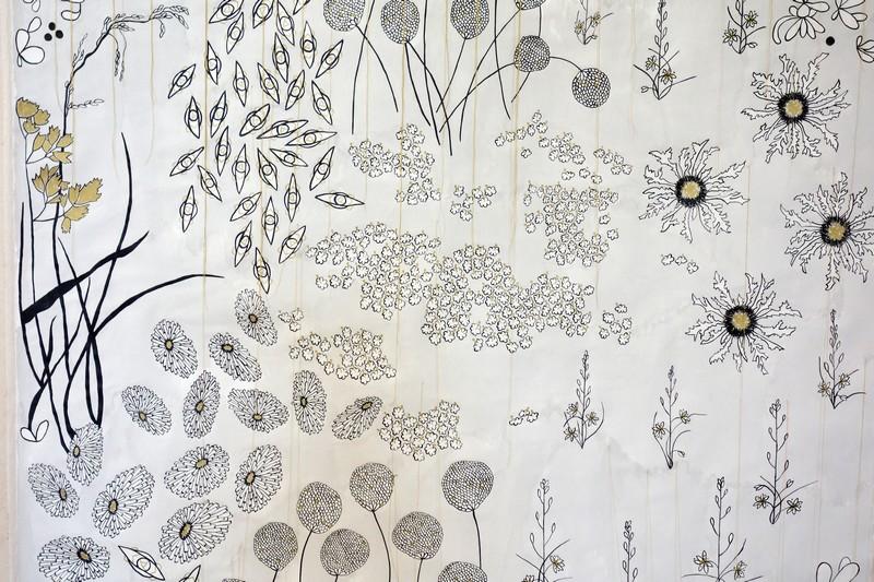 Ascension botanique, Ursula Caruel, Chapelle des Pénitents gris, Caromb, Ventoux