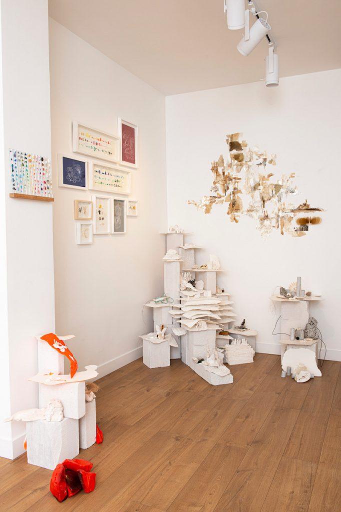 Exposition Fantastique Naturel de Laurence Nicola Jusqu'au 25 septembre 2021 (Fermeture au mois d'août), Segolene Brossette Galerie