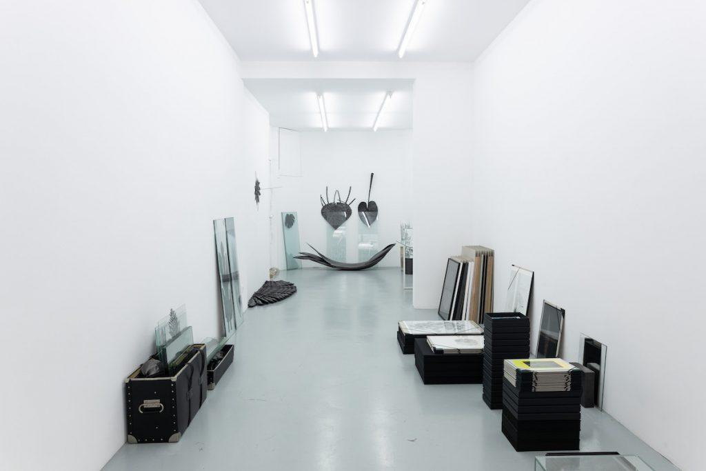 Exposition personnelle de Marie Denis, Alma Herbarium jusqu'au 24 juillet 2021, Galerie Alberta Pane, Paris