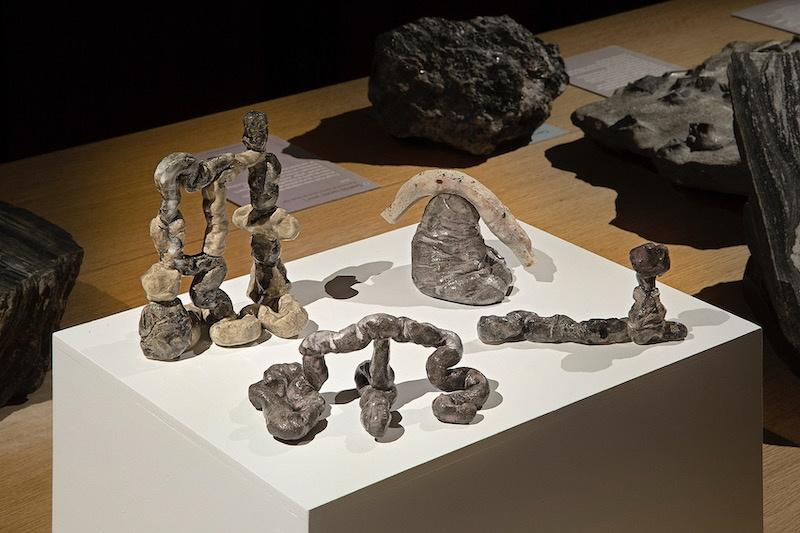 Vue exposition Néandertal de Johann Bertrand Dhy, Muséum d'histoire naturelle de Nantes ©Grégory Valton