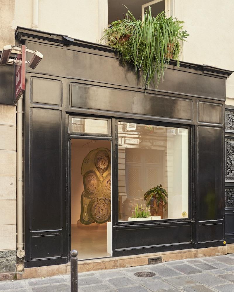 Sainte Anne Gallery © Francois Coquerel